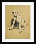 Dog by Cecil Aldin