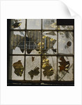 Broken window by Fay Godwin