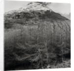 Stob Dubh by Fay Godwin