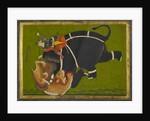 An elephant and rider trampling a tiger by Mir Kalan