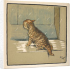 Kitten out in the rain by Cecil Aldin