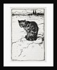 A cat by Arthur Rackham