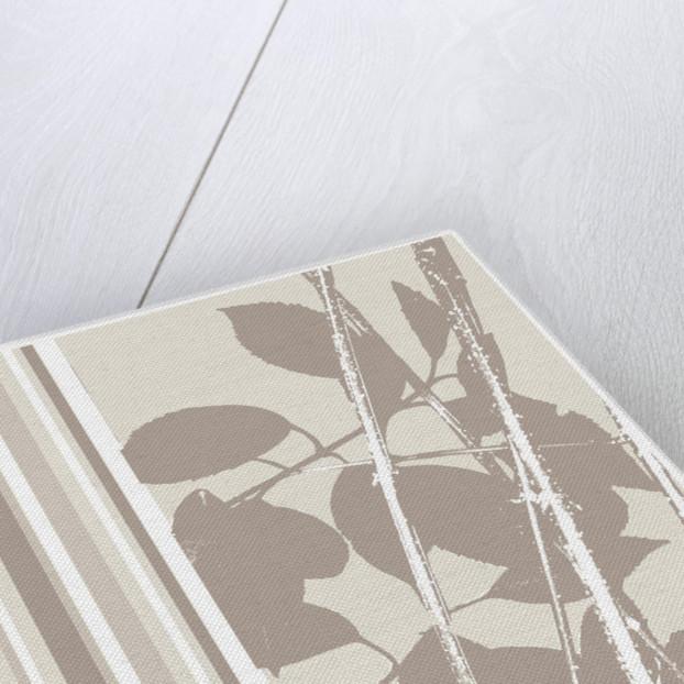 Organic Leaf II by Paula Dale