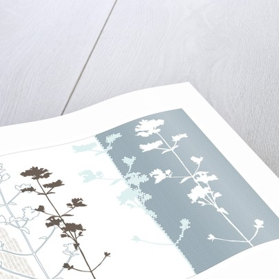 Organic Leaf IV by Paula Dale
