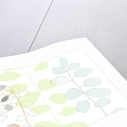 Organic Leaf III by Paula Dale