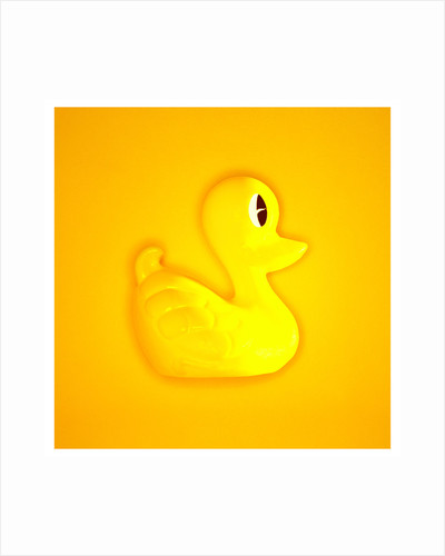 Rubber Duck by Cameron Rossi