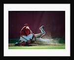Super Bowl by Phillipe Delmouz