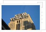 New Yorker by Paul Walker