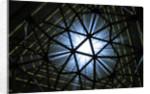 Vortex by Paul Walker