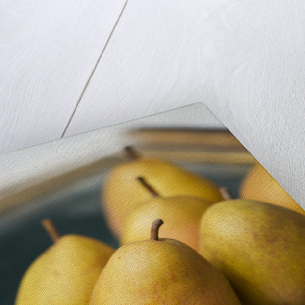 Pear 'buerre Hardy' - Rhs London Autumn Harvest Show 2011. Styling By Jacky Hobbs by Clive Nichols