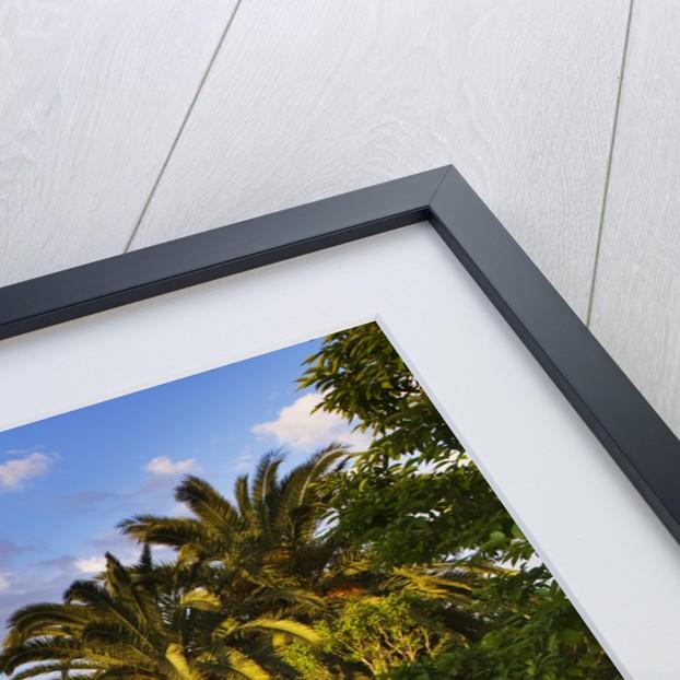 Designer James Basson, Scape Design, France by Clive Nichols