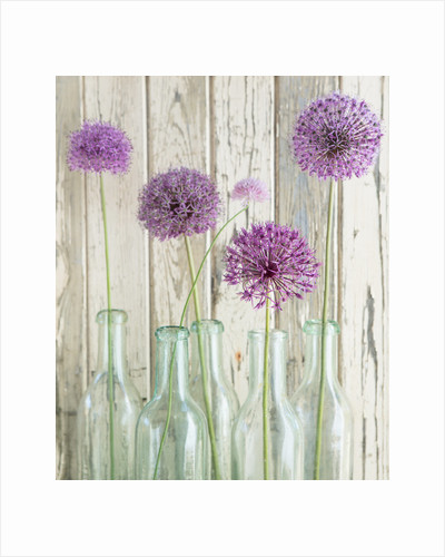 Glass bottles with alliums by Clive Nichols
