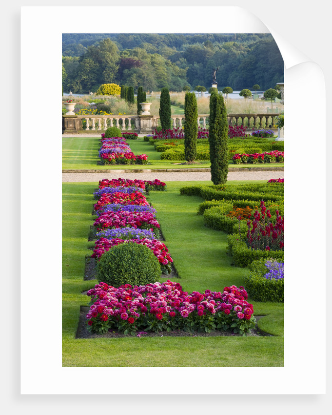 Trentham Gardens, Staffordshire:  The Italian Garden - The Upper Garden With Formal Bedding In Evening Light by Clive Nichols