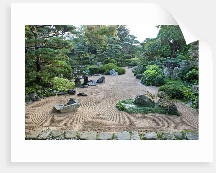 Garden Of Erik Borja, France: The Zen Meditation Gravel Garden With Rocks, Raked Gravel, Pool, Crane Island On Left, Turtle Island On Right With Cotoneaster Horizontalis by Clive Nichols