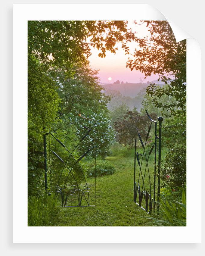 Moors Meadow Garden & Nursery, Herefordshire: Grass Path Leading Out Of Grass Garden With Beautiful Iron Gates At Dawn by Clive Nichols