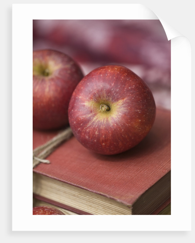 Apples - Malus 'red Windsor' - Rhs London Autumn Harvest Show 2011. Styling By Jacky Hobbs by Clive Nichols