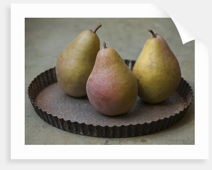 Pear 'double De Guerre' - Rhs London Autumn Harvest Show 2011. Styling By Jacky Hobbs by Clive Nichols