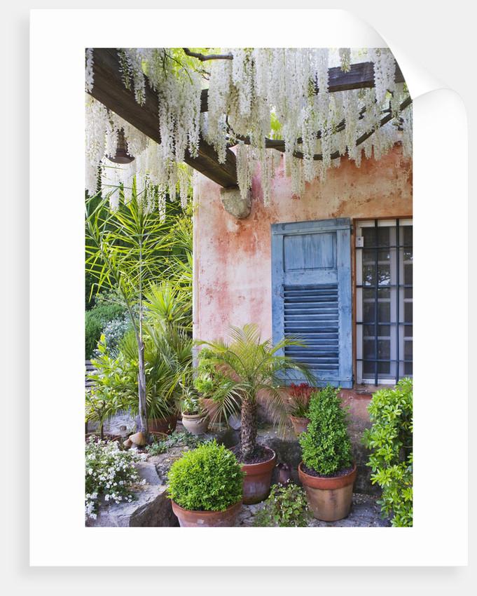 La Casella, France by Clive Nichols