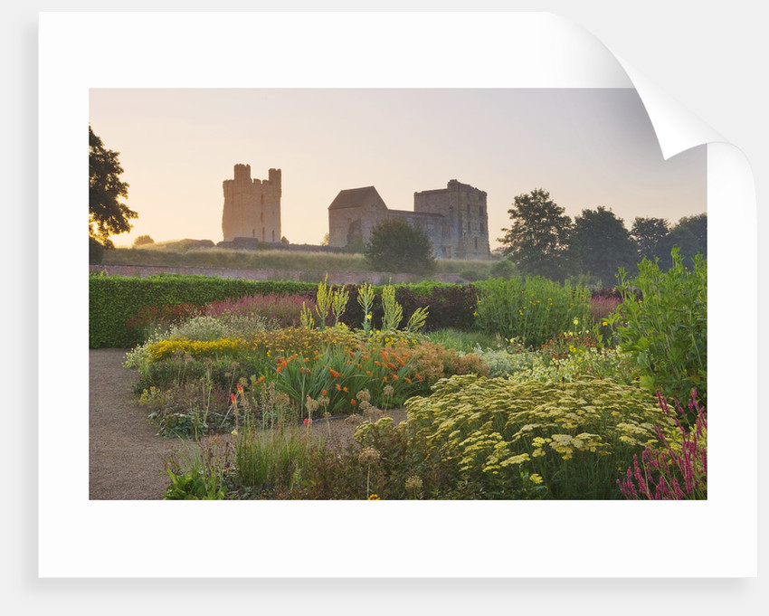Helmsley Walled Garden, Yorkshire: Helmsley Castle Seen At Dawn With Herbaceous Border In The Forground by Clive Nichols