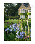 The Old Rectory, Haselbech, Northamptonshire - The Old Rectory Behind With Border Of Iris 'jane Phillips, Digitalis 'suttons Apricot' And Papaver Orientale 'patty's Plum' by Clive Nichols