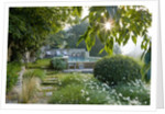 Provence, France: Garden Of Nicole De Vesian, La Louve: Swimming Pool At Dawn On The Lower Etrrace With Countryside Beyond by Clive Nichols