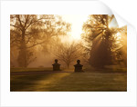 Wakehurst Place, Sussex - Autumn - Early Morning Sunlight Near The Lake by Clive Nichols