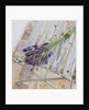 Hand-tied Lavender Arrangement On Old Chair by Clive Nichols