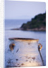 Corfu, Greece: Designer: Dominic Skinner - Meditteranean Style Garden  - View To White Terracotta Container Beside Swimming Pool With Sea Beyond, Lit Up At Night, Lighting by Clive Nichols