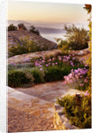 The Rou Estate, Corfu, Greece: Designer: Dominic Skinner - Meditteranean Style Garden - Path Through Village With Tulbaghia Violacea And Mountains Of Albania In The Background by Clive Nichols