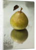 Pear 'josephine De Malines' - Rhs London Autumn Harvest Show 2011. Styling By Jacky Hobbs by Clive Nichols