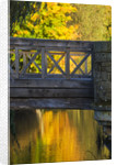 Hever Castle, Kent, Autumn: Bridge Over The Moat In Autumn With Reflections Of Trees by Clive Nichols