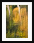 Hever Castle, Kent, Autumn: Moat In Autumn With Reflections Of Trees by Clive Nichols
