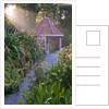 Tresco Abbey Garden, Tresco,  Isles Of Scilly by Clive Nichols