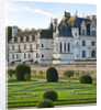 Chateau De Chenonceau, France: The Chateau Seen From Diane's Garden With Swirls Of Santolina by Clive Nichols