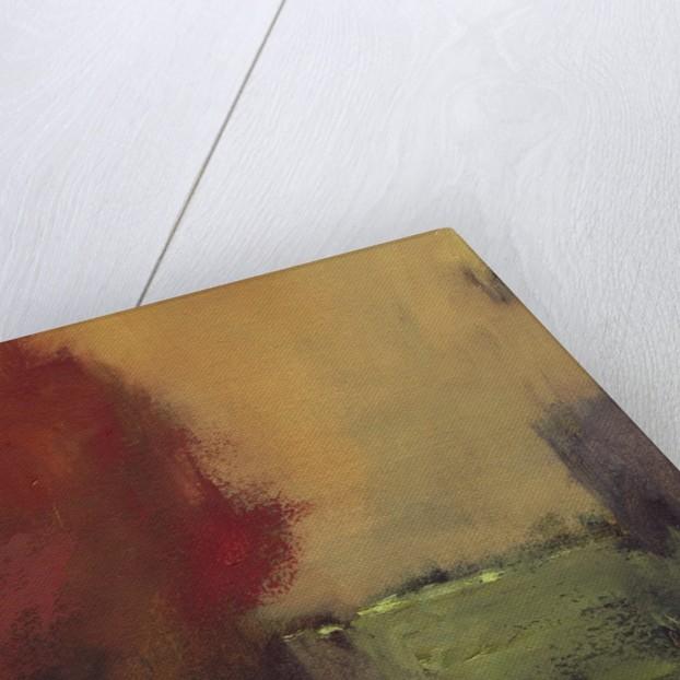 Sandpoint Red by Corbis