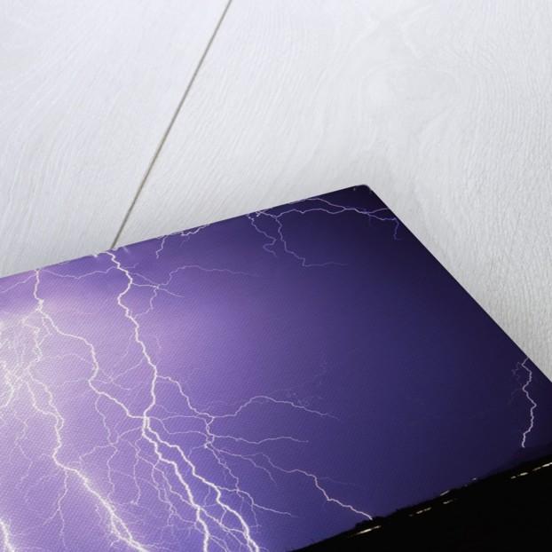 Lightning Striking the Ground by Corbis