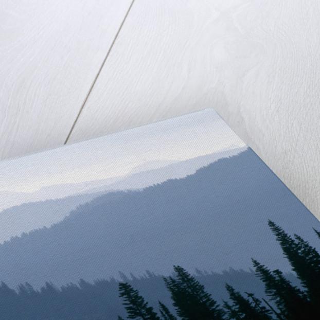 Fog in Cascade Range by Corbis