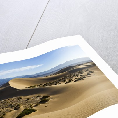 Death Valley by Corbis
