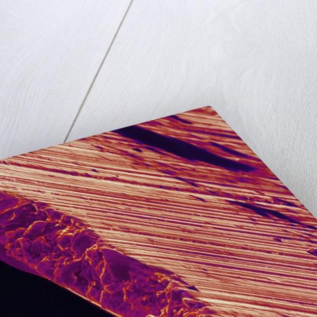 Cutting Edge of Used Razor Blade by Corbis