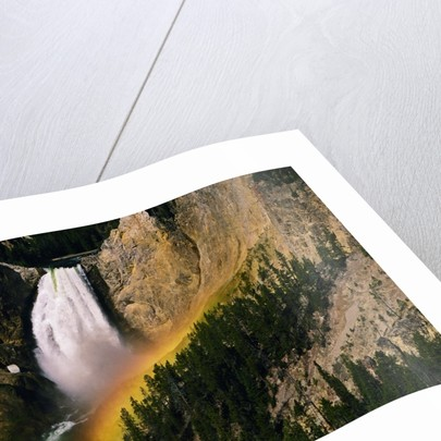 Grand Canyon of the Yellowstone by Corbis