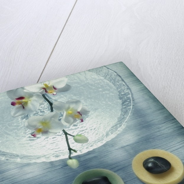 Bowl of Water and Soaps by Corbis
