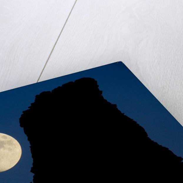 Full Moon Beside Rock by Corbis