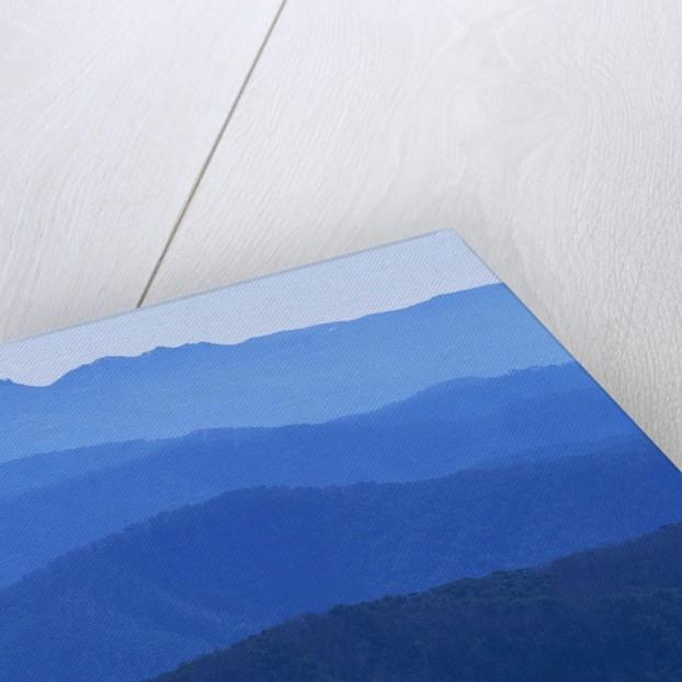 Mountain Ridges at Dawn in Australian Alps by Corbis