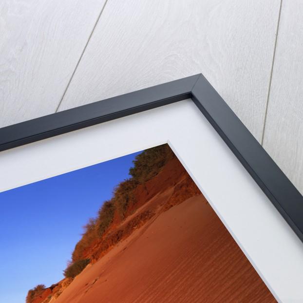 Red Sand Dunes Before an Australian Coastline by Corbis