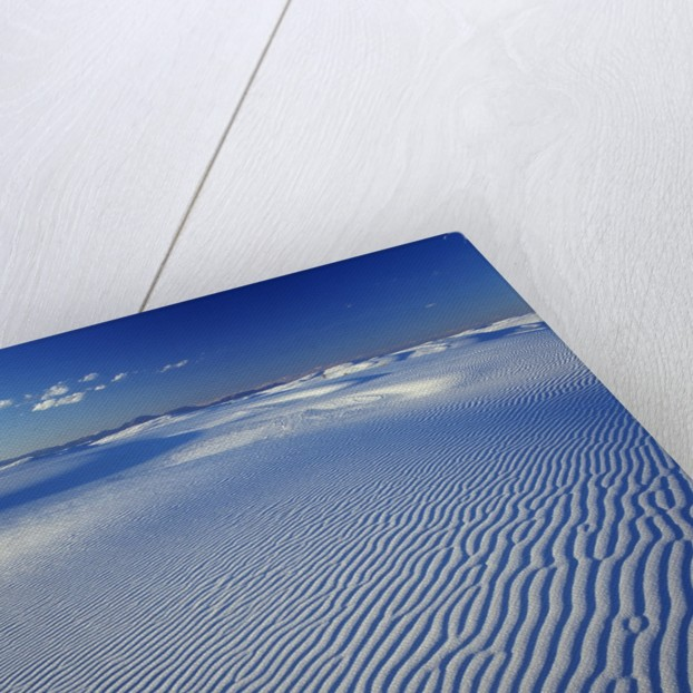 Sand Dune by Corbis