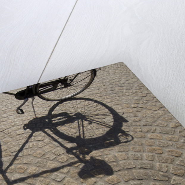 Bicycle Shadow on Cobblestone by Corbis