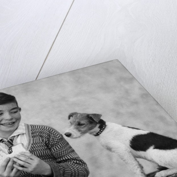 1920s 1930s Boy Eating Sandwich As Dog Stares At Food by Corbis