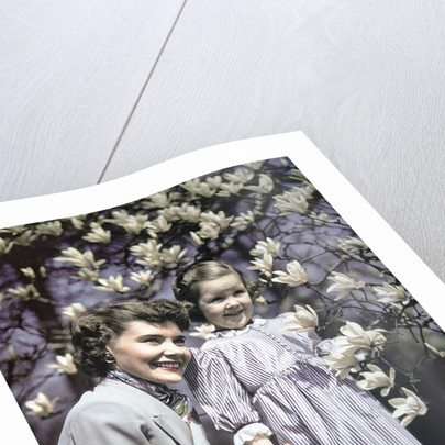 1940s Woman Mother Girl Daughter By Magnolia Blossoms Tulip Tree by Corbis