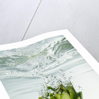 Artichoke in Water by Corbis