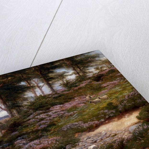 Through the Heather, Dunkeld, Scotland, United Kingdom by George Vicat Cole